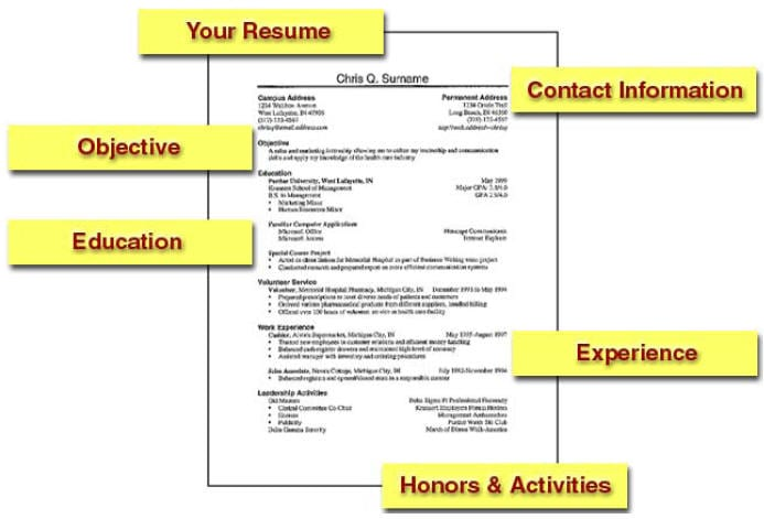 Scannable Resume Examples | Resume Format Download Pdf